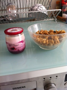Yogurt + granola = mmmm!
