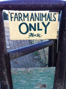 Hopefully, the non-farm animals are all literate.
