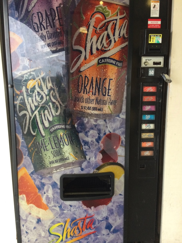 Honestly? I could also go for a Shasta. Especially because this must be the one place in the world that has a vending machine full of 'em.