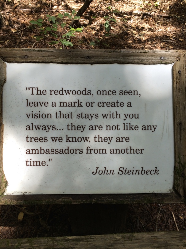 Let's be honest: Mr. Steinbeck's words are probably the most helpful here.