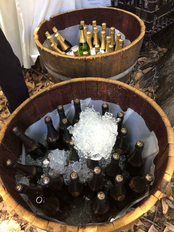 I don't even need caviar dreams when I've got buckets of champagne nearby.