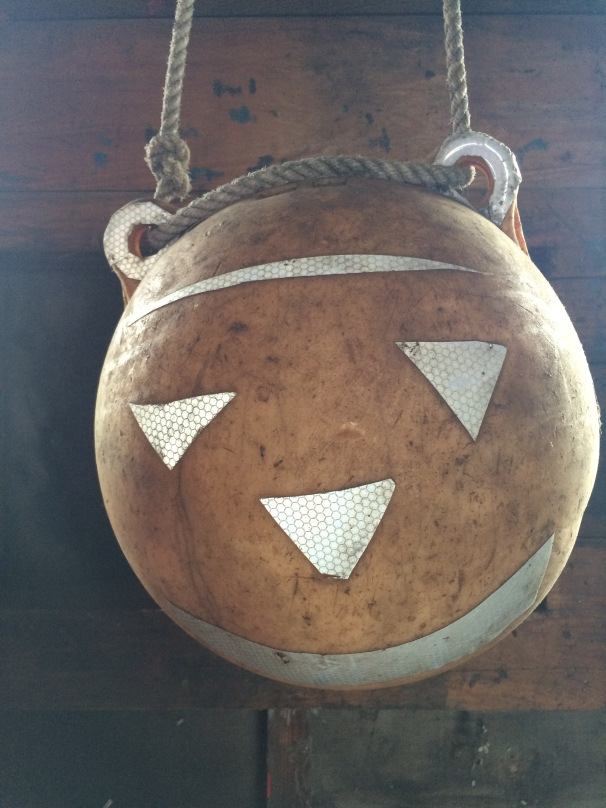 What evil mind turned this poor medicine ball into the stuff of nightmares? And – dear god – why?